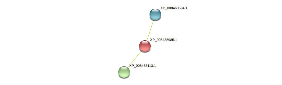 XP_008438985.1 protein (Cucumis melo) - STRING interaction network
