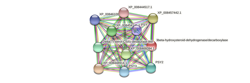 XP_008439071.1 protein (Cucumis melo) - STRING interaction network