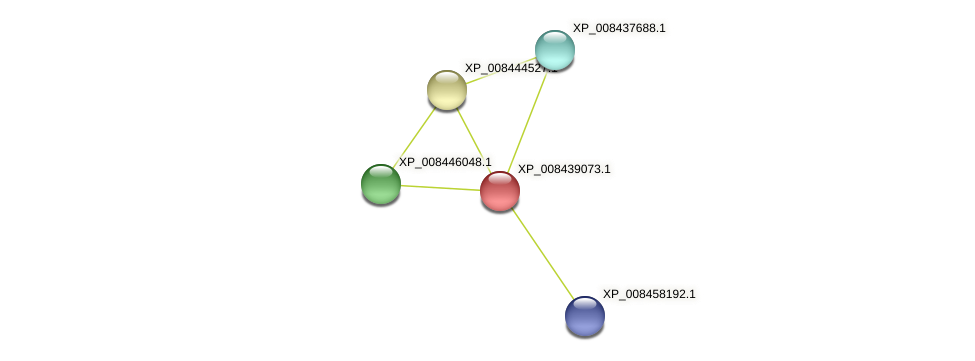 XP_008439073.1 protein (Cucumis melo) - STRING interaction network