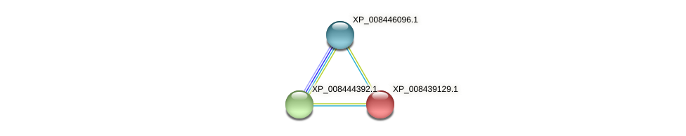 XP_008439129.1 protein (Cucumis melo) - STRING interaction network