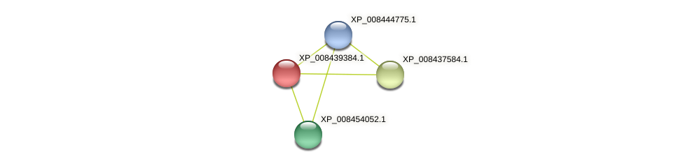 XP_008439384.1 protein (Cucumis melo) - STRING interaction network