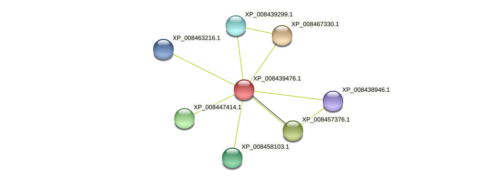 XP_008439476.1 protein (Cucumis melo) - STRING interaction network