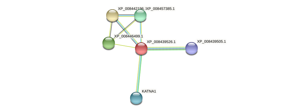 XP_008439526.1 protein (Cucumis melo) - STRING interaction network