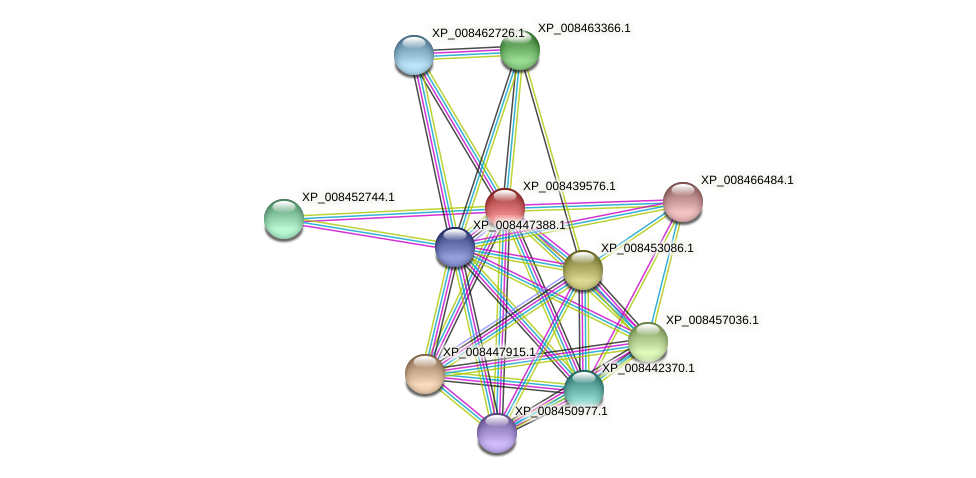 XP_008439576.1 protein (Cucumis melo) - STRING interaction network