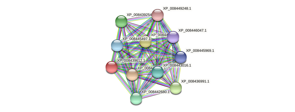 XP_008439612.1 protein (Cucumis melo) - STRING interaction network