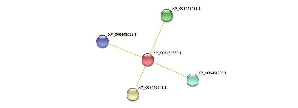 XP_008439662.1 protein (Cucumis melo) - STRING interaction network