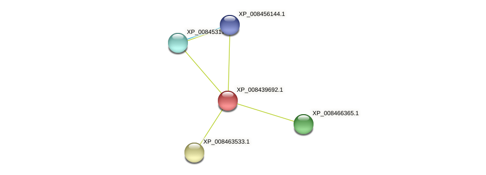 XP_008439692.1 protein (Cucumis melo) - STRING interaction network
