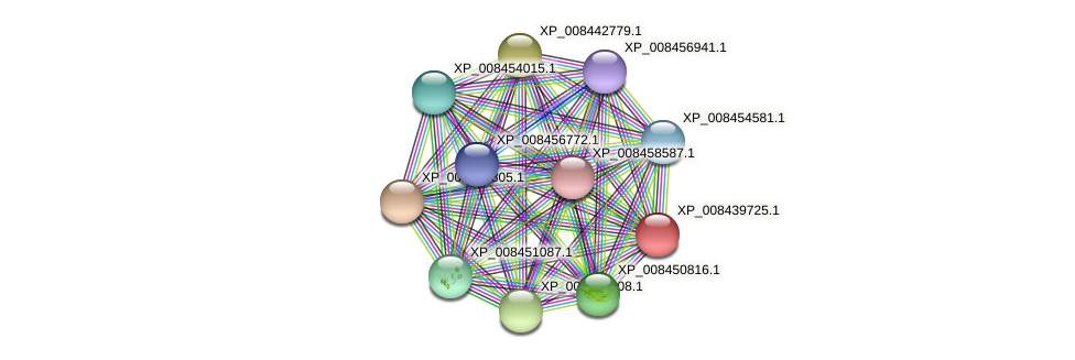 XP_008439725.1 protein (Cucumis melo) - STRING interaction network
