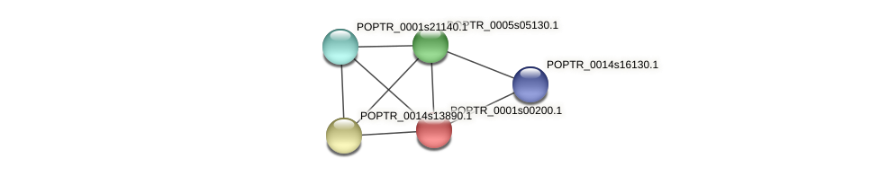 POPTR_0001s00200.1 protein (Populus trichocarpa) - STRING interaction network