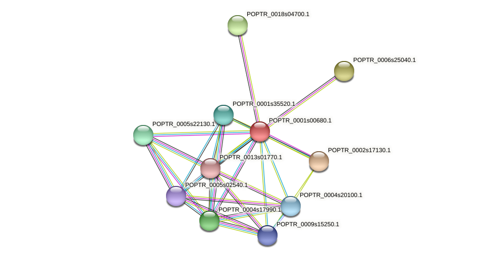 POPTR_0001s00680.1 protein (Populus trichocarpa) - STRING interaction network