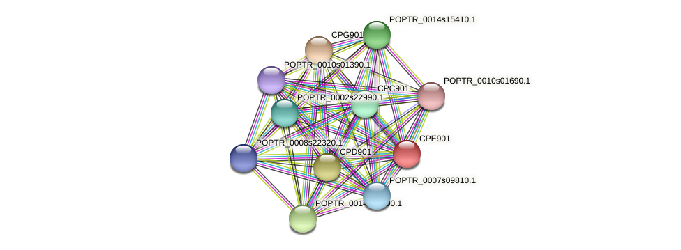 POPTR_0001s00710.1 protein (Populus trichocarpa) - STRING interaction network