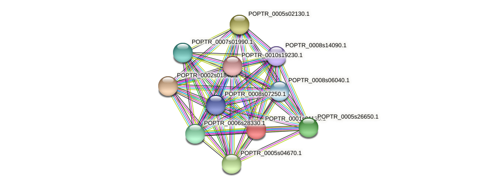 POPTR_0001s01130.1 protein (Populus trichocarpa) - STRING interaction network