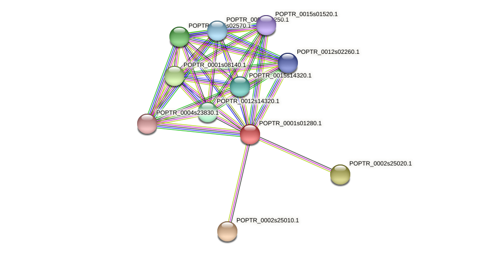 POPTR_0001s01280.1 protein (Populus trichocarpa) - STRING interaction network