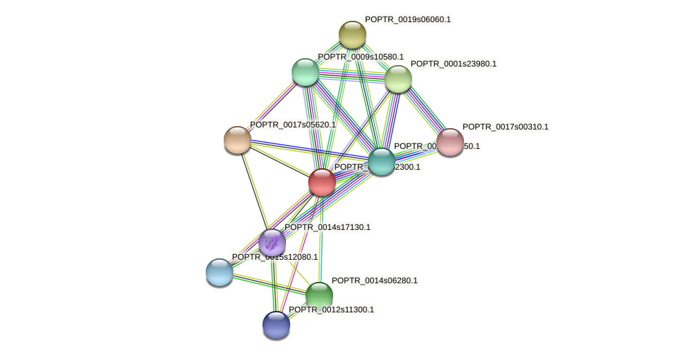 POPTR_0001s02300.1 protein (Populus trichocarpa) - STRING interaction network