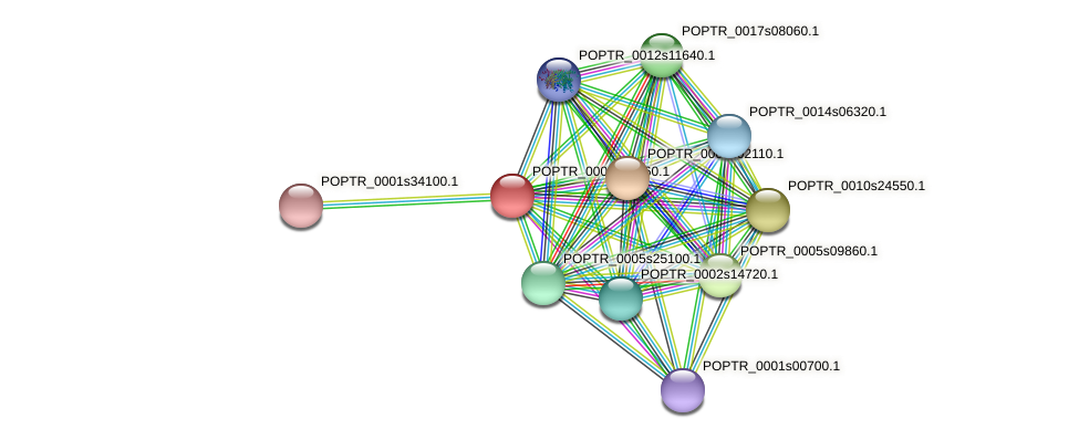 POPTR_0001s02560.1 protein (Populus trichocarpa) - STRING interaction network