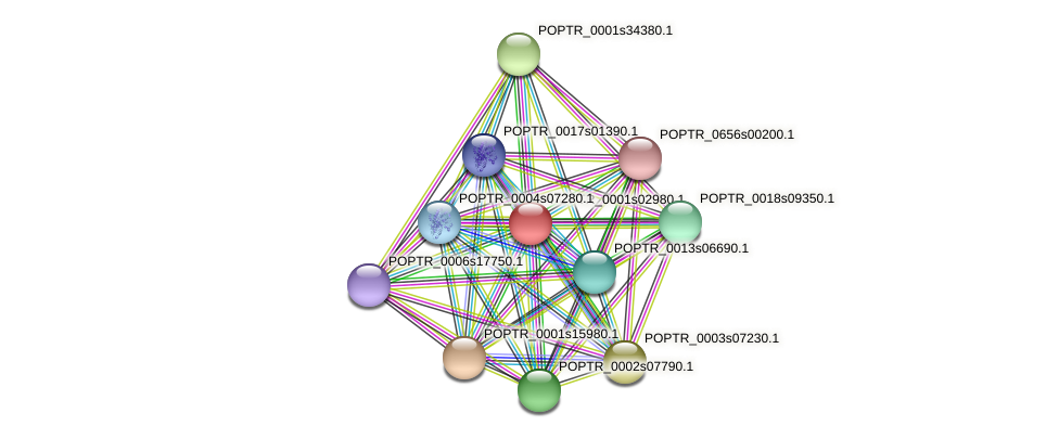 POPTR_0001s02980.1 protein (Populus trichocarpa) - STRING interaction network