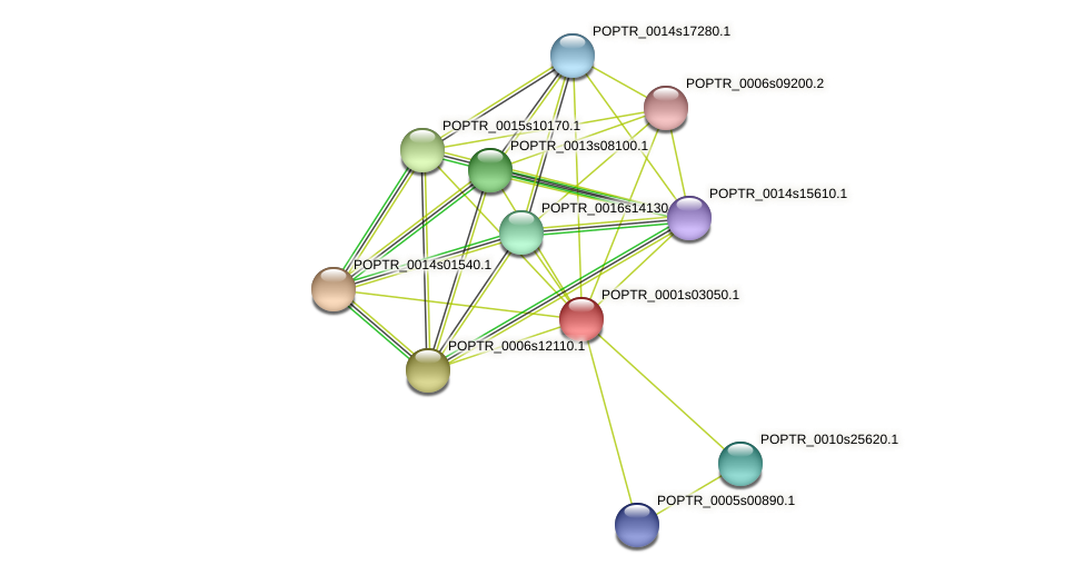 POPTR_0001s03050.1 protein (Populus trichocarpa) - STRING interaction network