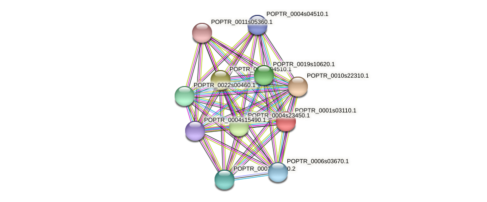 POPTR_0001s03110.1 protein (Populus trichocarpa) - STRING interaction network