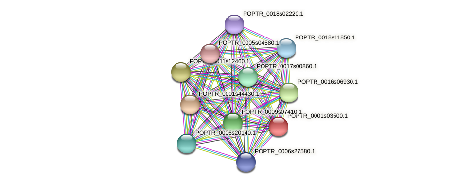 POPTR_0001s03500.1 protein (Populus trichocarpa) - STRING interaction network