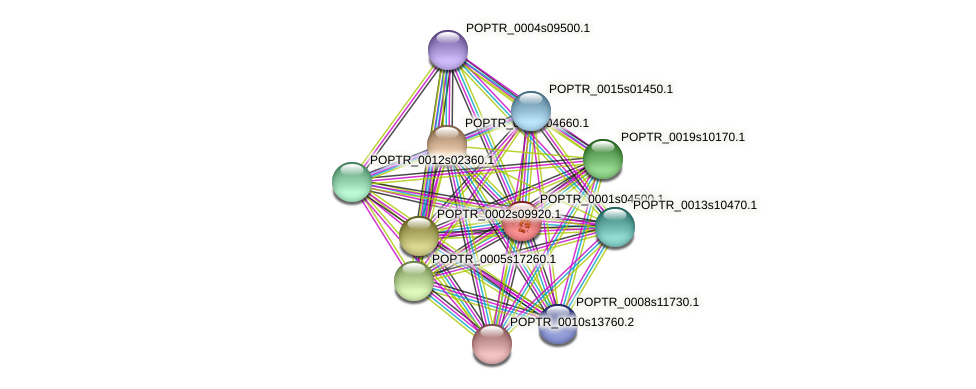 POPTR_0001s04500.1 protein (Populus trichocarpa) - STRING interaction network