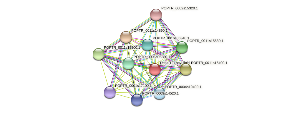 POPTR_0001s04990.1 protein (Populus trichocarpa) - STRING interaction network
