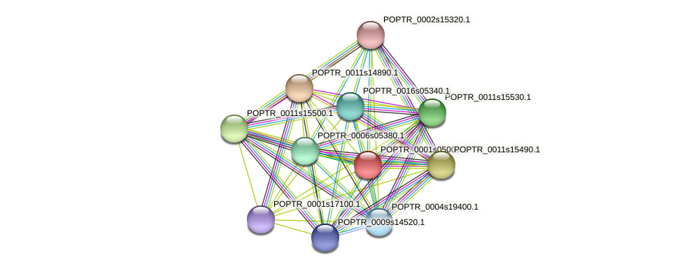 POPTR_0001s05000.1 protein (Populus trichocarpa) - STRING interaction network