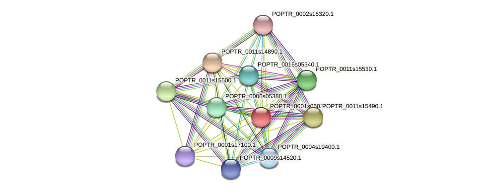 POPTR_0001s05020.1 protein (Populus trichocarpa) - STRING interaction network