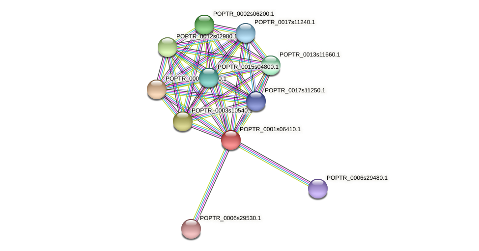 POPTR_0001s06410.1 protein (Populus trichocarpa) - STRING interaction network
