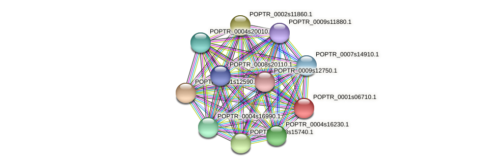 POPTR_0001s06710.1 protein (Populus trichocarpa) - STRING interaction network