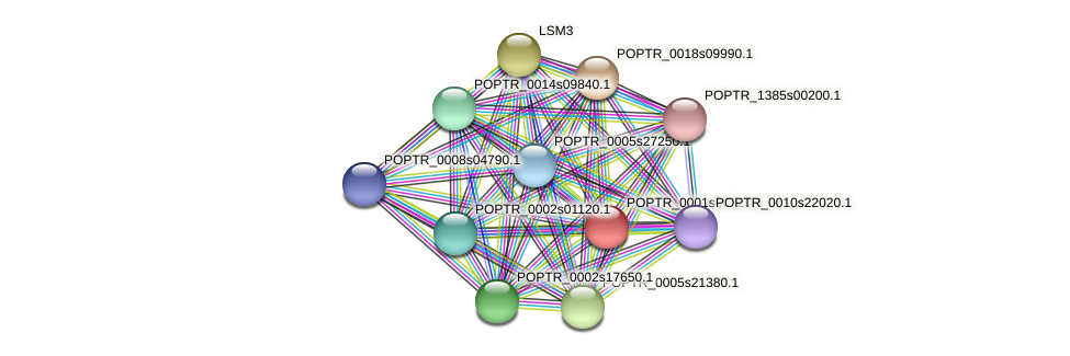 POPTR_0001s06720.1 protein (Populus trichocarpa) - STRING interaction network