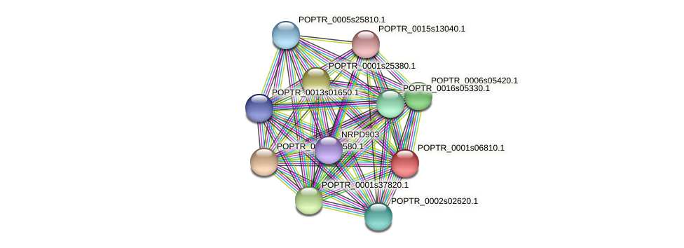 POPTR_0001s06810.1 protein (Populus trichocarpa) - STRING interaction network