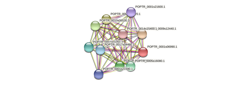 POPTR_0001s06990.1 protein (Populus trichocarpa) - STRING interaction network