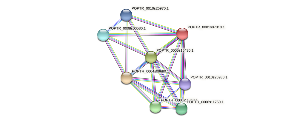 POPTR_0001s07010.1 protein (Populus trichocarpa) - STRING interaction network