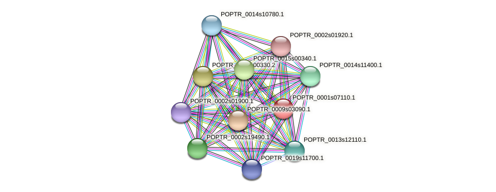 POPTR_0001s07110.1 protein (Populus trichocarpa) - STRING interaction network
