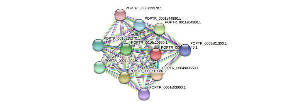 POPTR_0001s07140.1 protein (Populus trichocarpa) - STRING interaction network