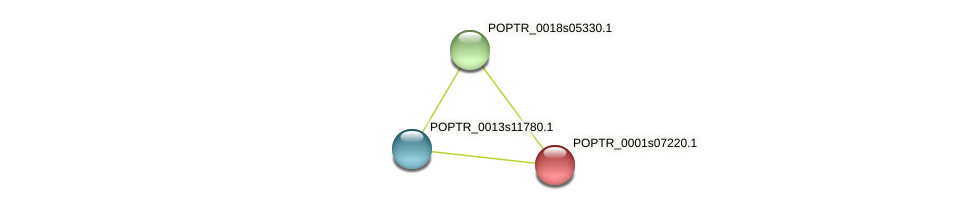 POPTR_0001s07220.1 protein (Populus trichocarpa) - STRING interaction network