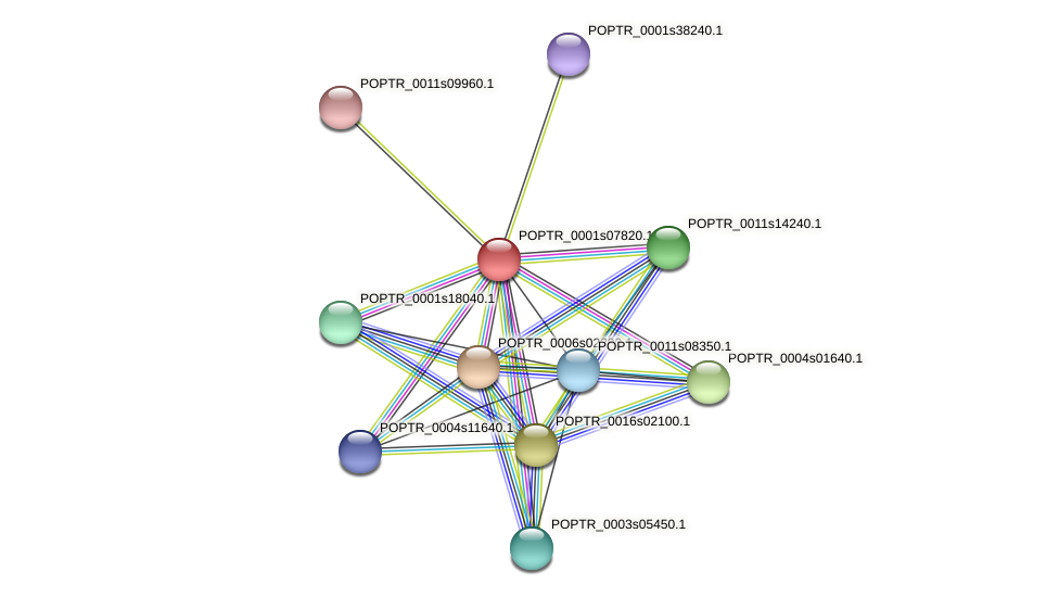 POPTR_0001s07820.1 protein (Populus trichocarpa) - STRING interaction network