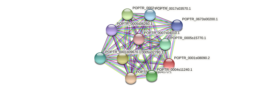 POPTR_0001s08090.1 protein (Populus trichocarpa) - STRING interaction network