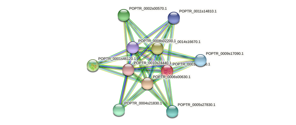 POPTR_0001s08600.1 protein (Populus trichocarpa) - STRING interaction network