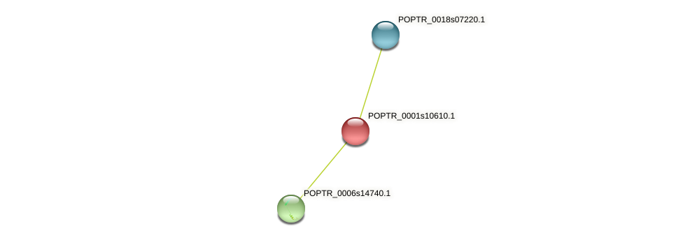 POPTR_0001s10610.1 protein (Populus trichocarpa) - STRING interaction network