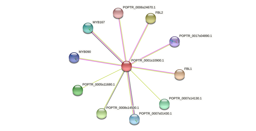 POPTR_0001s10900.1 protein (Populus trichocarpa) - STRING interaction network