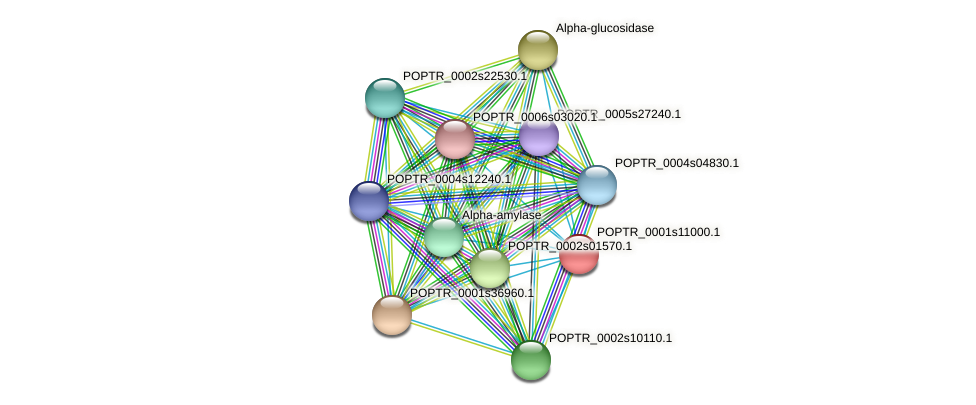 POPTR_0001s11000.1 protein (Populus trichocarpa) - STRING interaction network