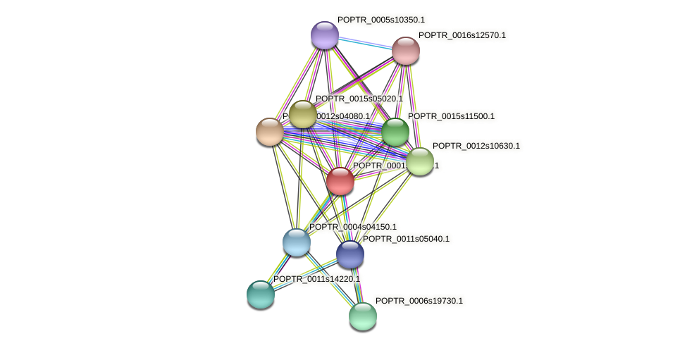 POPTR_0001s11140.1 protein (Populus trichocarpa) - STRING interaction network