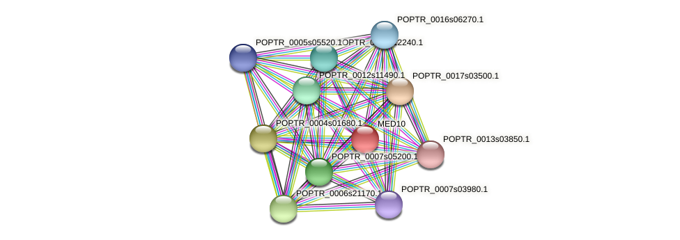 POPTR_0001s11370.1 protein (Populus trichocarpa) - STRING interaction network