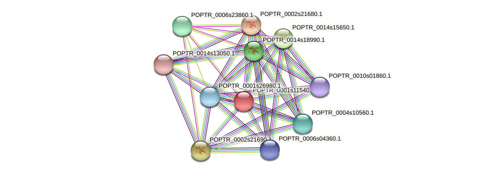 POPTR_0001s11540.1 protein (Populus trichocarpa) - STRING interaction network