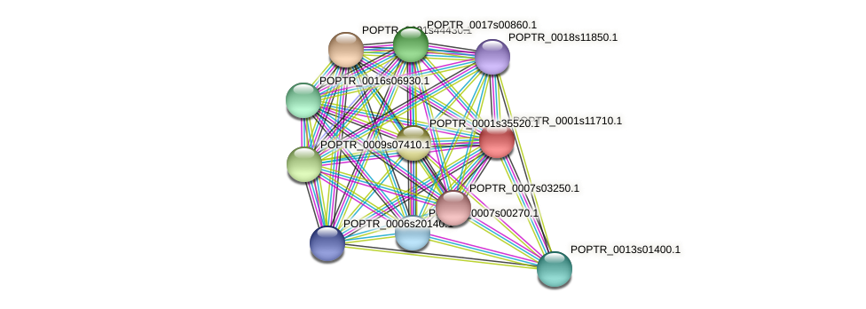 POPTR_0001s11710.1 protein (Populus trichocarpa) - STRING interaction network