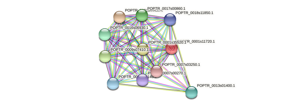 POPTR_0001s11720.1 protein (Populus trichocarpa) - STRING interaction network