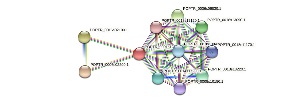 POPTR_0001s12560.1 protein (Populus trichocarpa) - STRING interaction network