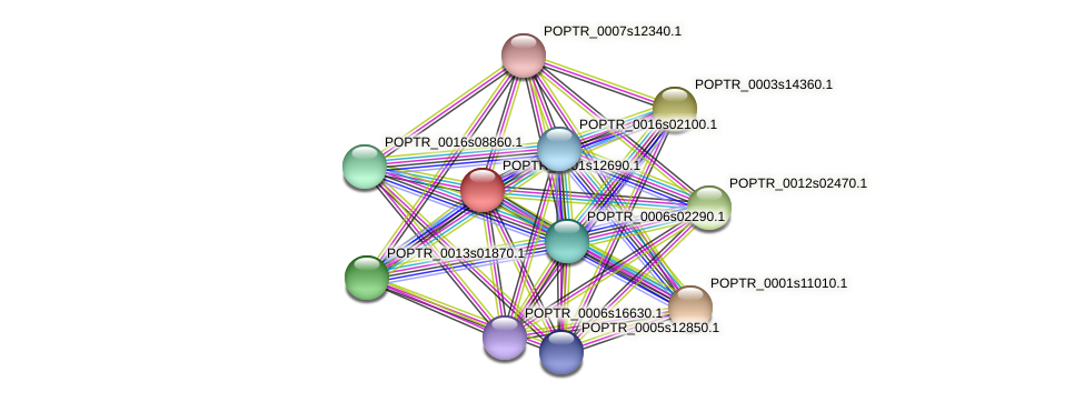 POPTR_0001s12690.1 protein (Populus trichocarpa) - STRING interaction network