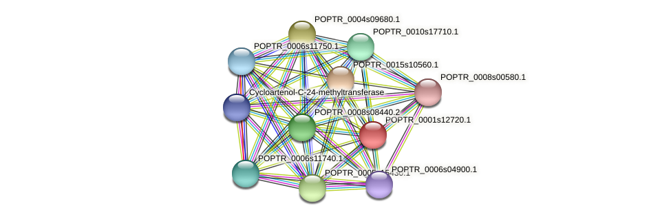 POPTR_0001s12720.1 protein (Populus trichocarpa) - STRING interaction network